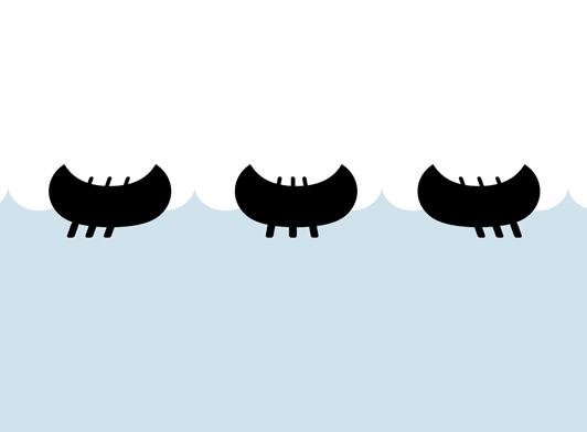 kayac 2