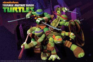 turtles写真01